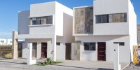 casa.suricata-032