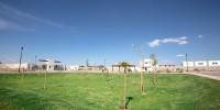 casa.suricata-092