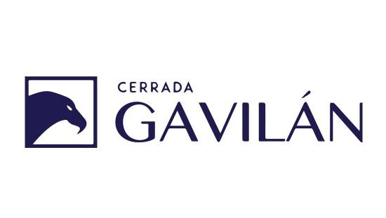 gavilanchico